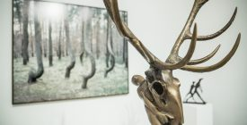 Finisszázs: Rejtekerdő kiállítás