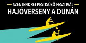 Hajóverseny a Dunán!