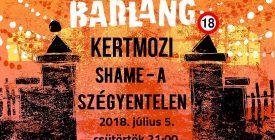 BARLANG KERTMOZI – Shame - A szégyentelen (18+)