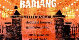Melléküzemág debütáló koncert