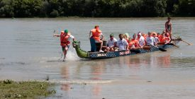 Hajósverseny Szentendrén, a Pestisűző Fesztiválon