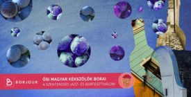 Ősi magyar kékszőlők borai - Borjour mesterkurzus