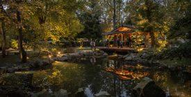 """""""Fények sötétedés után"""" – új díszkivilágítás a Japánkertben"""