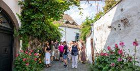 Építészet- és művészettörténeti séta Szentendrén