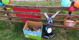 Városszerte ajándékkal teli húsvéti fészkek várták a fészekrablókat Szentendrén