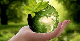 A Heti KultKihívás aktuális témája a környezettudatosság