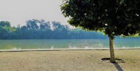 Szabadtéri Utcatárlat a Dunakorzón
