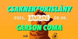 TELTHÁZ! - Csaknekedkislány + Carson Coma @ Szentendre / Barlang (Kert)